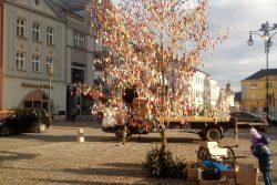 Hranické náměstí opět zdobí kraslicovník / fotogalerie / Kraslicovník opět zkrášluje náměstí, foto: Dagmar Holcová