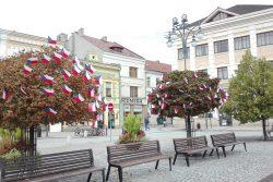 Vlajkovníky zdobí centrum Hranic / fotogalerie / Vlajkovníky na náměstí, foto: Ivana Žáková