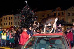 Rozsvícení stromu bylo v ladovském duchu / fotogalerie / Moravské Vánoce - Vystoupení cvičených koz, foto: Jiří Necid