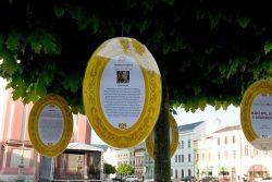 Osobnosti na stromech aneb Knihovna v ulicích / fotogalerie / Kdo byl kdo v Hranicích, foto: Jiří Necid