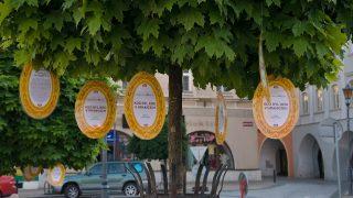 Osobnosti na stromech aneb Knihovna v ulicích