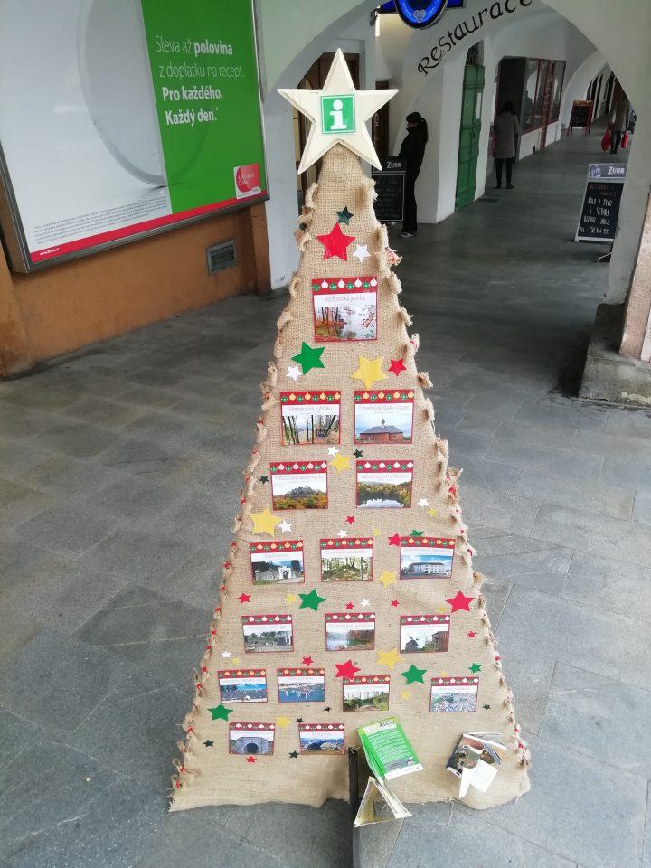 Vánoční stromky zdobí podloubí
