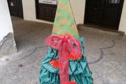 Vánoční stromky zdobí podloubí / fotogalerie / sdr
